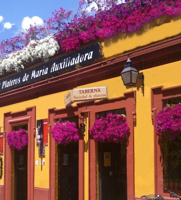 Fachada en el concurso de patios cordobeses. Restaurantes en Córdoba. Sociedad Plateros María Auxiliadora